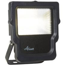 Ansell ACALED10 10W Carina CW LED Floodlight
