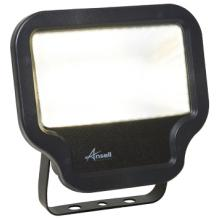 Ansell ACALED50/WW 50W Carina WW LED Floodlight